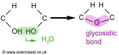 a condensation reaction