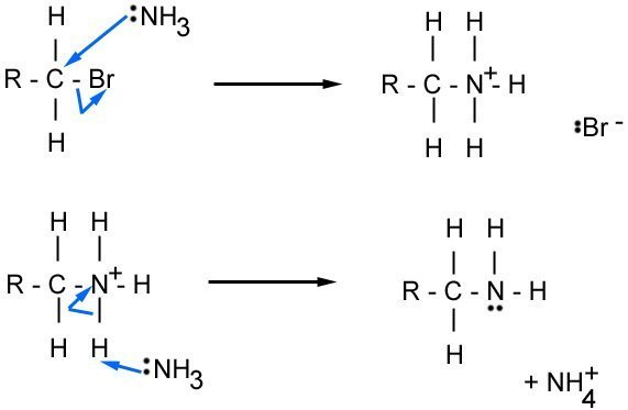 nucleophillic substitution of haloalkane by ammonia