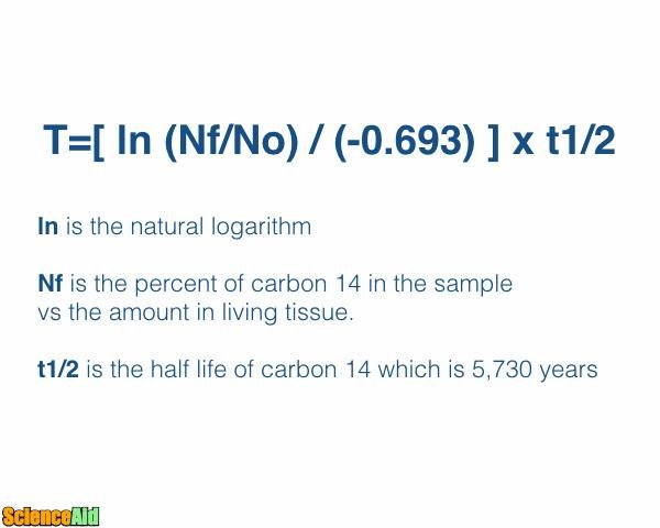 Carbon 14 dating exponential equation word 2
