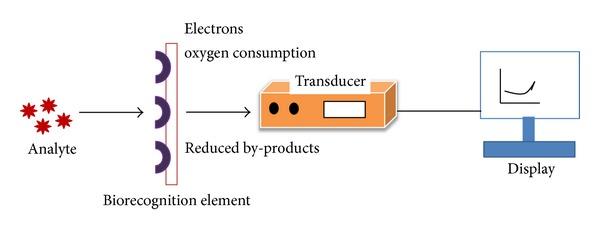 Biosensors Scienceaid