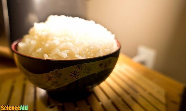 Health Advantages of Rice 51828.jpg