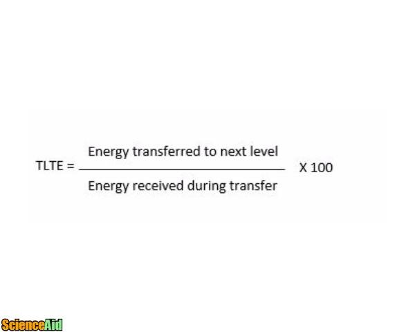 Calculating Energy Transfer 13228.jpg