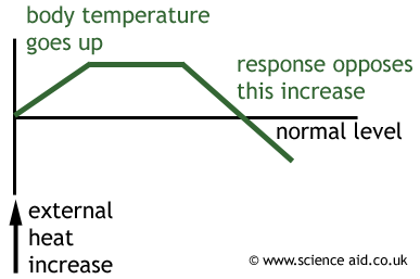 normal temperature feedback loop diagram all about repair and normal temperature feedback loop diagram